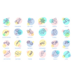 thin line spices icon set vector image