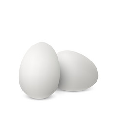 white realistic eggs vector image