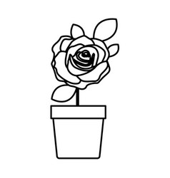 silhouette flowered rose with leaves and stem in vector image vector image