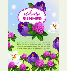 summertime greeting card of summer flowers vector image
