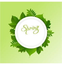 Spring frame background vector image vector image