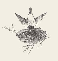 Bird builds a nest hand drawn sketch vector