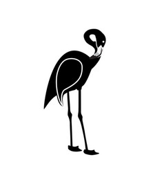 Black and white pink flamingo isolated on white vector