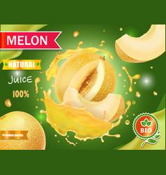 Melon juice advertising honeydew vector