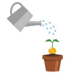 money dollar plant and water can icon vector image