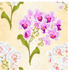 seamless texture branches orchids vector image