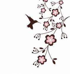 spring cherry blossoms vector image