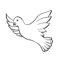 dove flying bird in sketch style outline or vector image