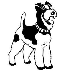 fox terrier black white vector image vector image
