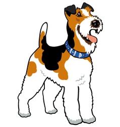 fox terrier vector image vector image