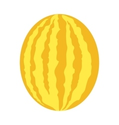 Melon In Flat Style Design vector image