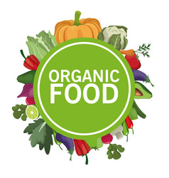 organic food nutrition menu image vector image