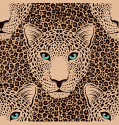 Pattern with leopard muzzle and leopard fur vector