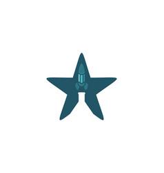 star landing rocket lab logo vector image