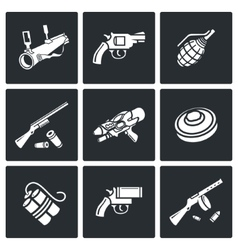 Various types of weapons icons set vector image vector image