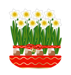chinese new year 8 narcissus bloom in a ceramic vector image