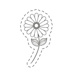 Flower daisy floral decoration cut line vector