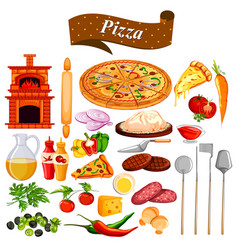 food and spice ingredient for pizza vector image
