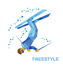 Freestyle skiing superpipe or slopestyle vector