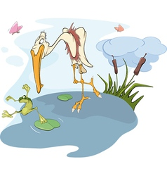 Heron and frog vector image