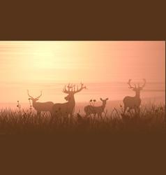 Horizontal wild animals on meadow vector
