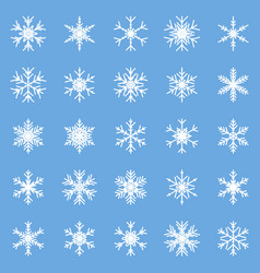 set of different winter snowflakes blue white vector image
