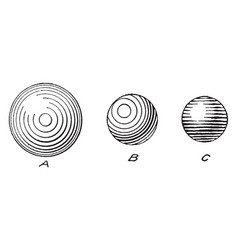 sphere shading useful skills for a vector image