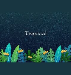 tropical leaf in night summer garden background vector image