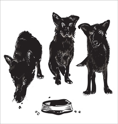 Dogs Near Bowl vector image vector image