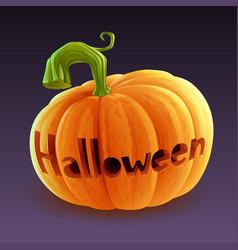 halloween pumpkin vector image