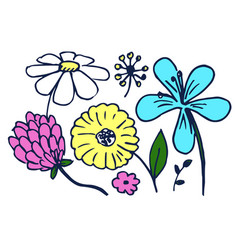 set of cute colorful flowers vector image