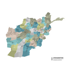Afghanistan higt detailed map with subdivisions vector
