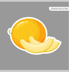 cartoon fresh melon isolated sticker vector image