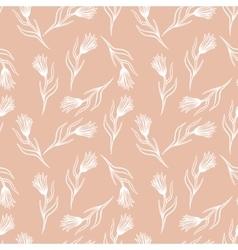 Cornflower seamless pattern vector image