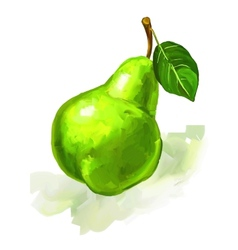 fruit pear hand drawn vector image