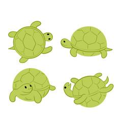 Green tortoises vector