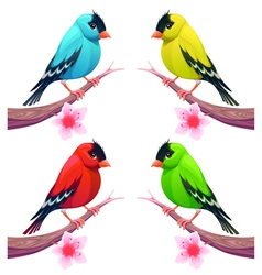 group birds in different color tones vector image