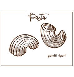 pasta gamiti rigatti chalk sketch icon for italian vector image