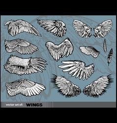set wings vector image