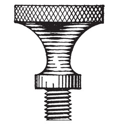 thumb screw shading hanging a fixture vintage vector image