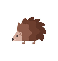 flat style of hedgehog vector image