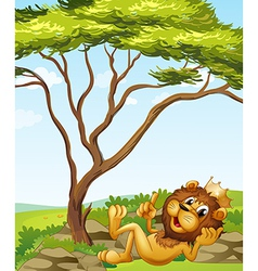 A king lion lying down near the tree vector image