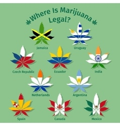 Marijuana leaves with the international flags vector