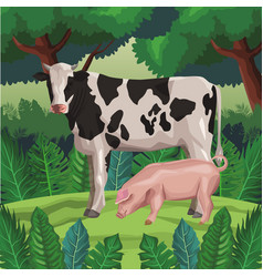 Cow with pig vector