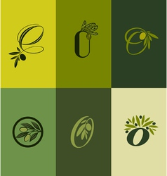 Olive tree branch Set of labels vector image vector image