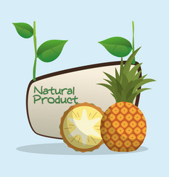 Pineapple natural product label vector
