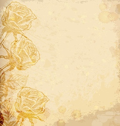 Realistic old paper with roses vector image