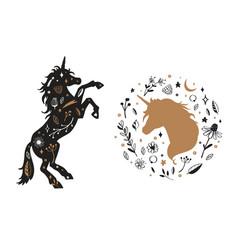 silhouette unicorn and unicorn head in vector image