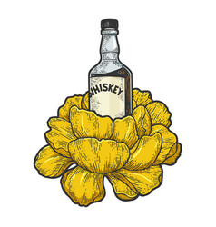 whiskey bottle flower sketch engraving vector image