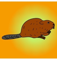 Beaver pop art aster vector image